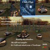 Wild west campfire for 4 & landscape-Box
