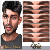 .:the-HAUS:. Timmy HD Eyebrows (LeL) (homme)