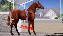 Cheval D'or / TeeglePet Unicorn / Ontario Lunging Set.
