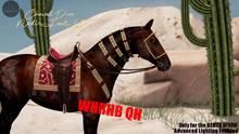 Cheval D'or / WHRH Bento Quarter Horse / Nedir Tack Set.