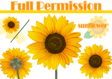 [Full Permission] SUNFLOWER // LIMITED