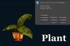 Slon slm plant 738px 2x