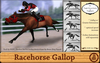 BRR: Racehorse Gallop Animation