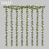 tarte. wall vine lights