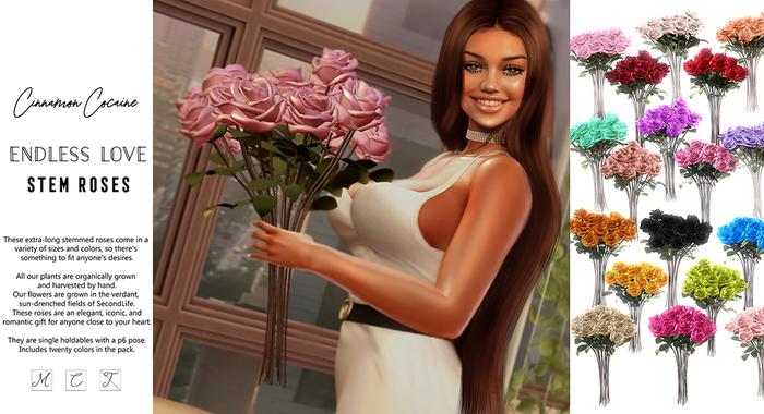 [Cinnamon Cocaine] Endless Love Stem Rose Bouquet  - 20 Colors