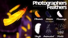 [inZoxi] - Photographers Feathers 2021
