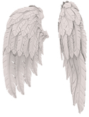 RIOT / Cupid's Wings - White