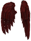 RIOT / Cupid's Wings - Sear