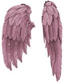 RIOT / Cupid's Wings - Rose