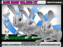 Babe  Bunny Builders Kit