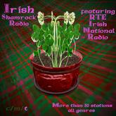Charming Irish Shamrock Pot Radio-featuring RTE