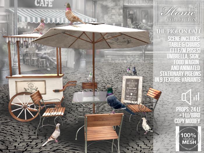 Pigeon, Cafe