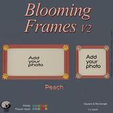 *PC* Blooming Frame V2 Peach