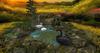 CJ Cascading Pond - Swan Lake - animat. white Swan