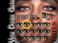 LOTUS. Hermit Eyes 02 BOX