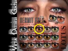 LOTUS. Hermit Eyes 03 BOX