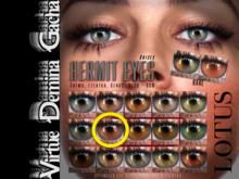 LOTUS. Hermit Eyes 07 BOX