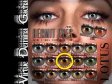 LOTUS. Hermit Eyes 08 BOX