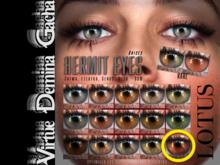 LOTUS. Hermit Eyes 15 BOX