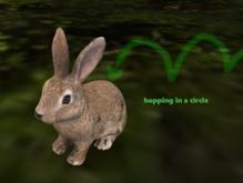 #Mesh Little Bunny Hopper