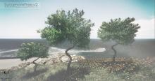 LB Sycamore Tree v2 Animated 4 Seasons