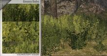 -Hisa- Greenery Bushes