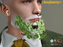 boyberry Clover Beard