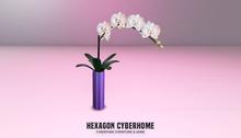 HEXAGON orchid purple
