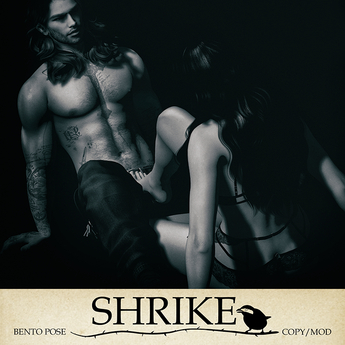 SHRIKE - You Like That?  - Couples Pose