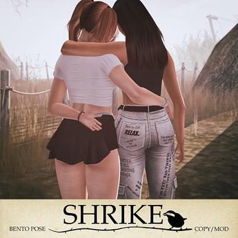 SHRIKE - LYLAS  - Friends Pose