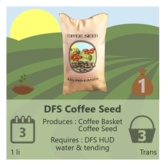 DFS Coffee Seed