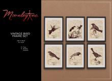 Moonley Inc. - Vintage Bird Frame Set
