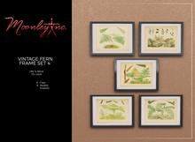 Moonley Inc. - Vintage Fern Frame Set 4