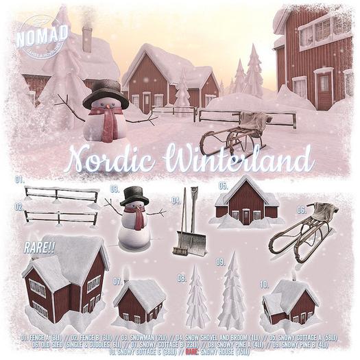 NOMAD // Nordic Winterland // 10