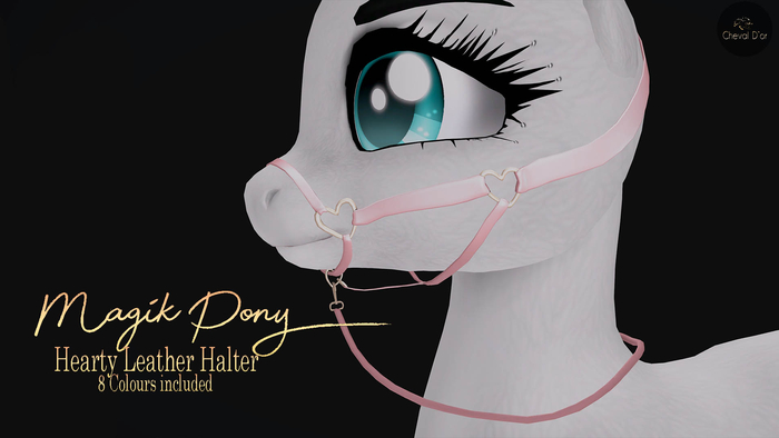 Cheval D'or / Magik Pony / Hearty Leather Halter.