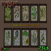 *YEN* Apothecary Pictures