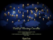 .: RatzCatz :. Floating Field of Candles (rez)