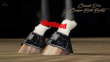 Cheval D'or / TeeglePet Shetland / Caesar Glittery Bell Boot.