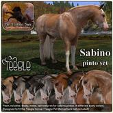 Texture Barn: Sabino Pinto pack for Teegle Horses & TeeglePets