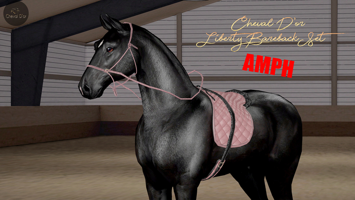 Cheval D'or / TeeglePet American Paint Horse / Liberty Bareback Set.