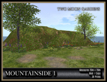 TMG - MOUNTAINSIDE 1* Landscaped Mountain