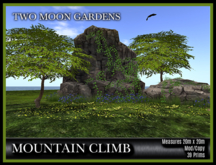 TMG - MOUNTAIN CLIMB* Landscaped Mountain with climbing animations