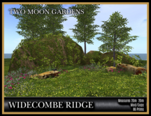 TMG - WIDECOMBE RIDGE* Landscaped Mountain