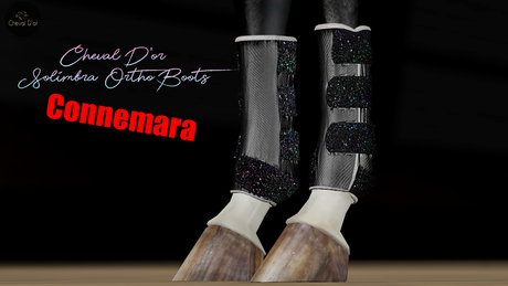 Cheval D'or / TeeglePet Connemara / Solimbra Glittery Boots.