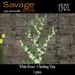 White Roses - Climbing Vine