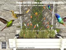 Hummingbird, trellis