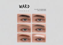 WARD. Filipe Brows HD - LeLUTKA