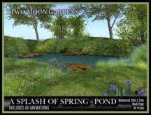 TMG - A SPLASH OF SPRING - POND*