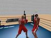 Boxing 008
