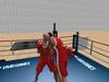 Boxing 009